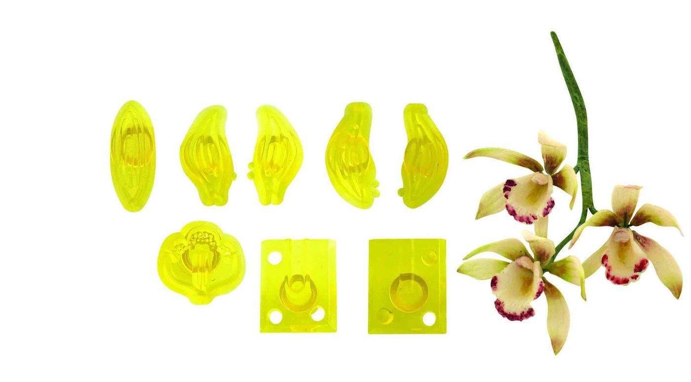 Sada 8ks formiček – malá orchidej Cymbidium PME