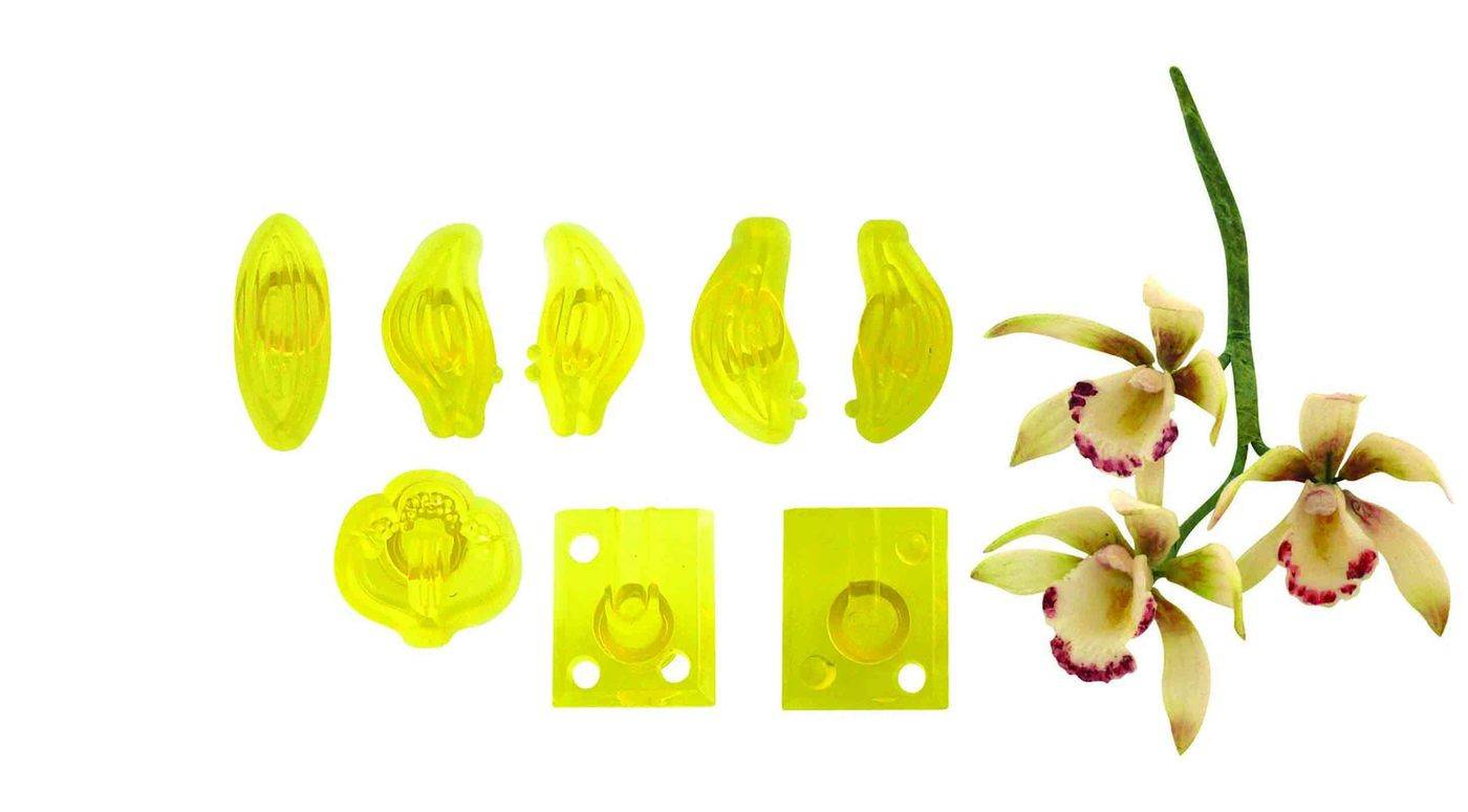 Sada 8ks formiček – malá orchidej Cymbidium - PME