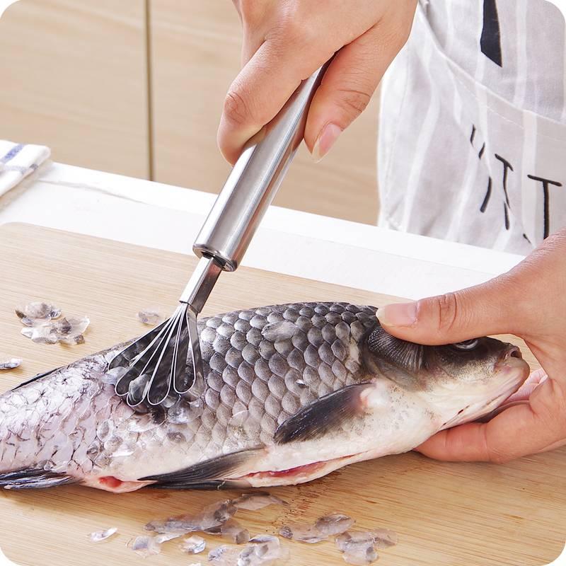 Škrabka na ryby a kokos nerez - ILA
