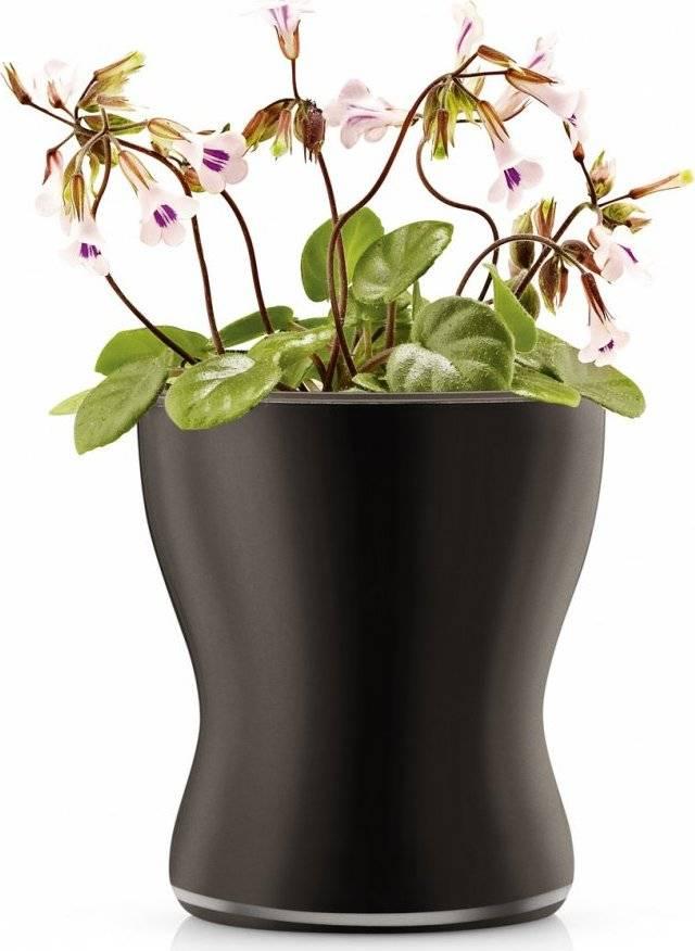 Skleněný samozavlažovací květináč na bylinky, černá 13cm, 568255 eva solo