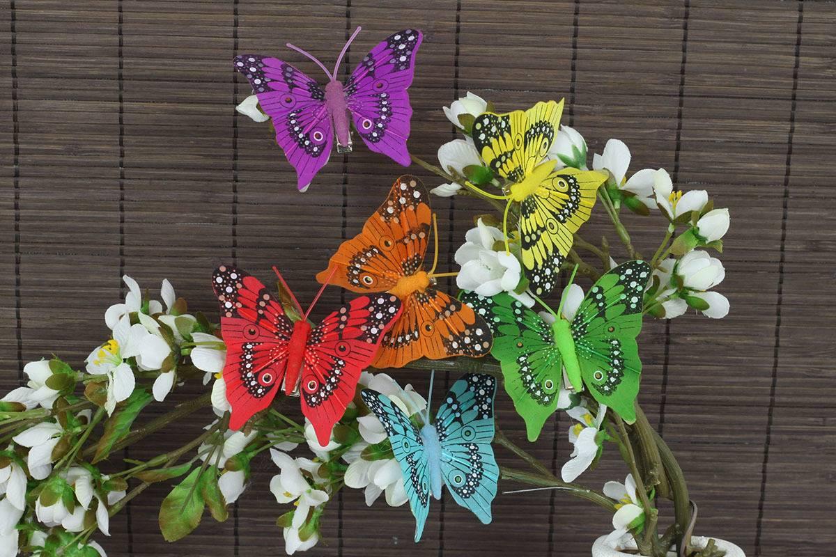 Motýl s klipem  sada 12 ks , mix 6 barev MO756703 Art