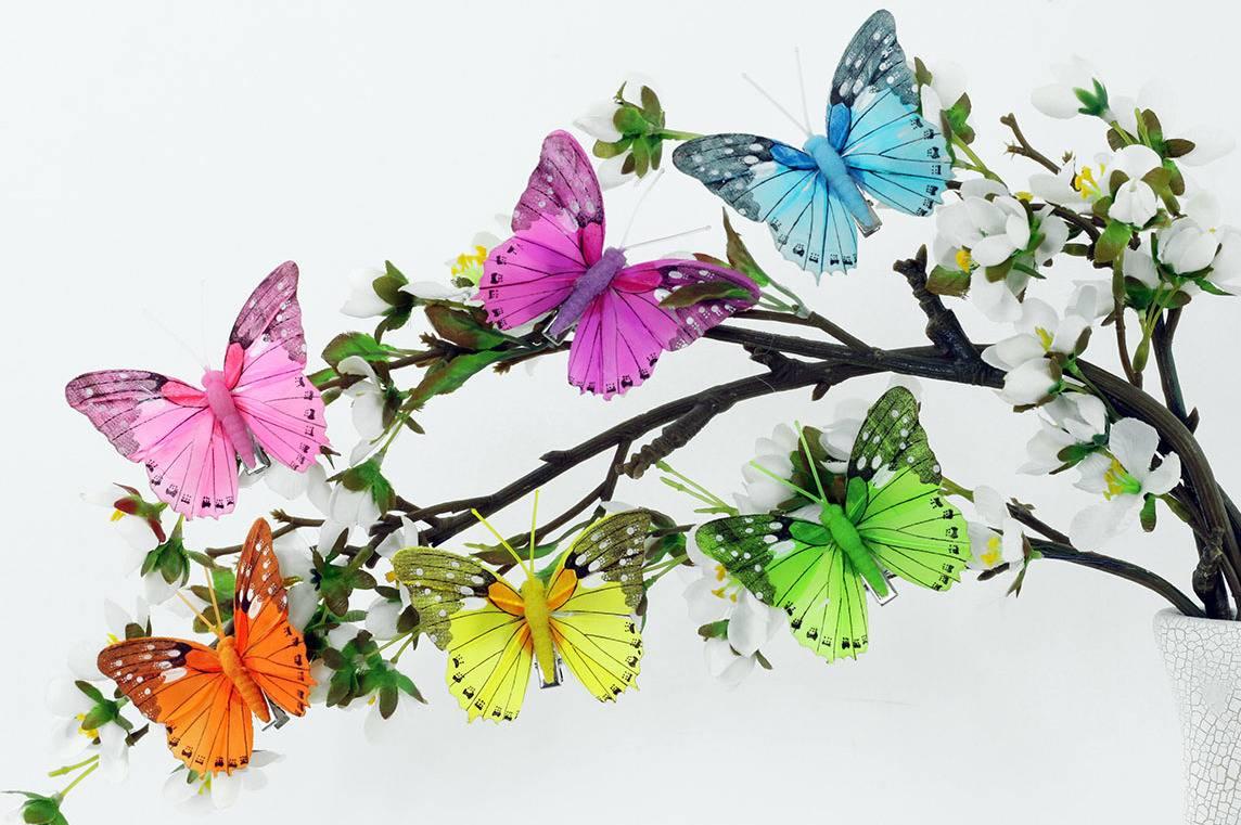 Motýl s klipem, cena za 12ks tj.1 box MO809560 Art