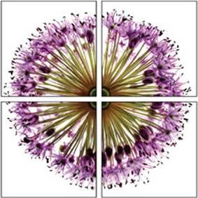 Obraz sada 4kusy OBK018 Art