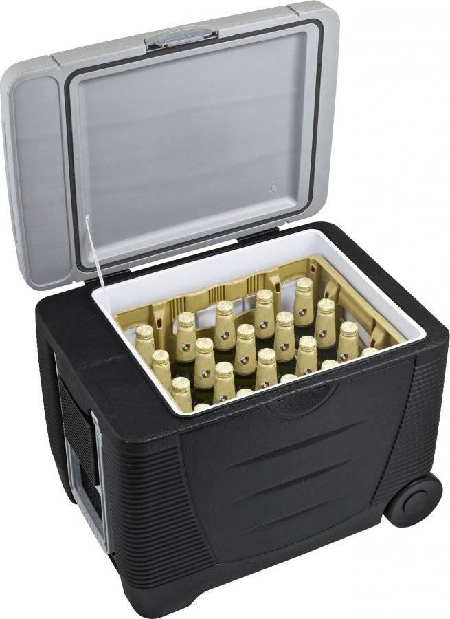 Autochladnička C&W 45 litrů, 12/230 V 639052 G21