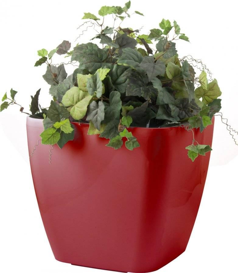 Samozavlažovací květináč Cube maxi červený 45 cm 6392421 G21