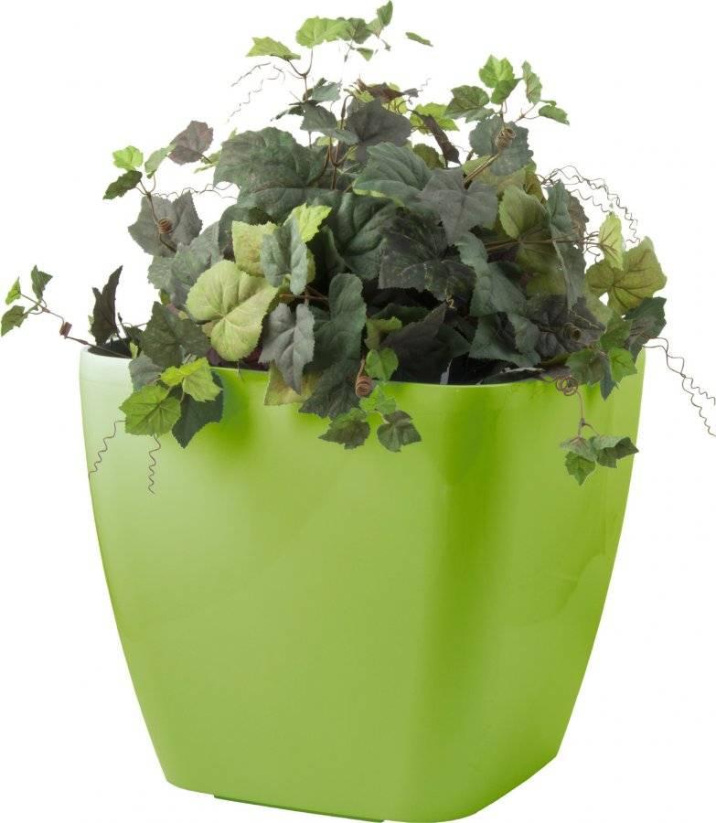 Samozavlažovací květináč Cube maxi zelený 45 cm 6392422 G21