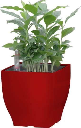 Samozavlažovací květináč Cube mini červený 13.5 cm 6392574 G21