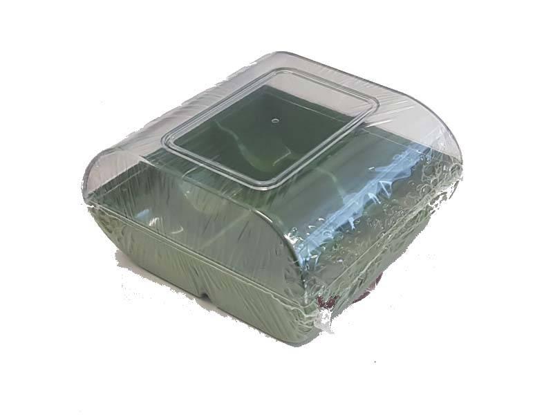 Plastová krabička na sušenky zelená - Silikomart