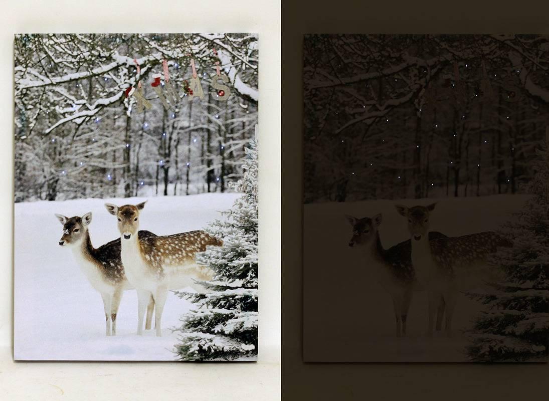 Nástěnný obraz, svíticí - LED, zimní motiv BD511 Art