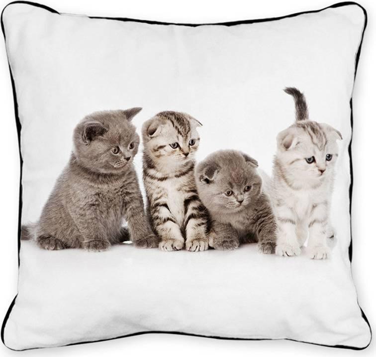 Polštář s výplní. Foto z obou stran. Čtyři koťata POL519 Art
